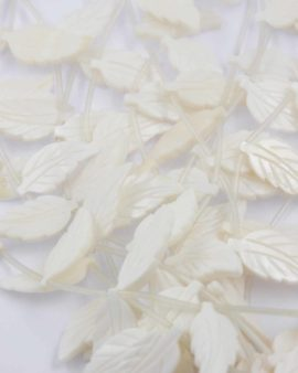 Mother of pearl leaf white